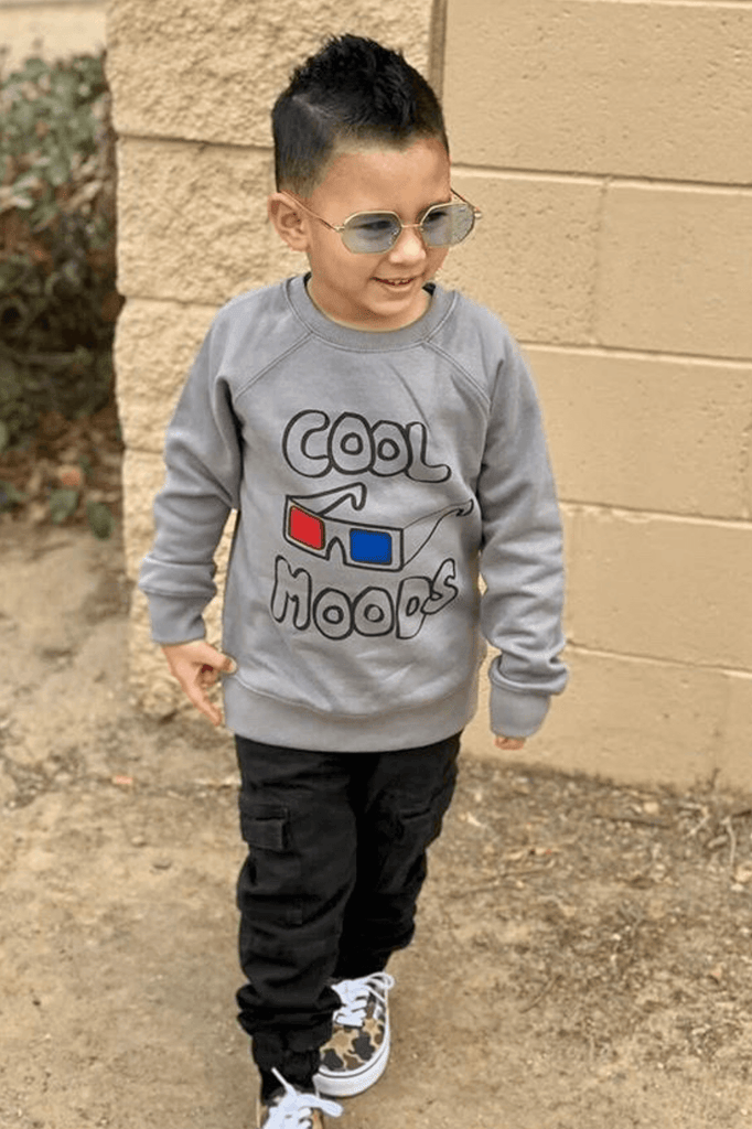 Toddler Boy Pullover Crew Sweater -Grey.png