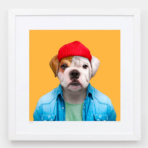 Zoo Portraits | Charlie, the English Bulldog Bull by Yago Partal