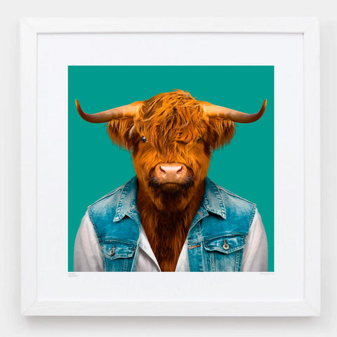 Zoo Portraits | Craig, the Scottish Highland Bull by Yago Partal