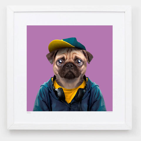 Zoo Portraits | Nuan, the Pug by Yago Partal