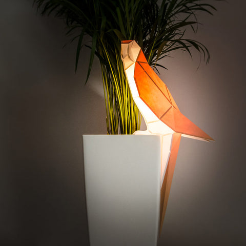 Parrot DIY Paperlamp from Owl Paperlamps