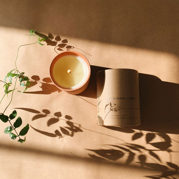 PF Candle Co Night Blooming Jasmine Terra Soy Candle