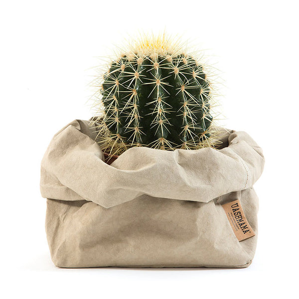 Uashmama washable Paper Bag Cachemire with a cactus inside