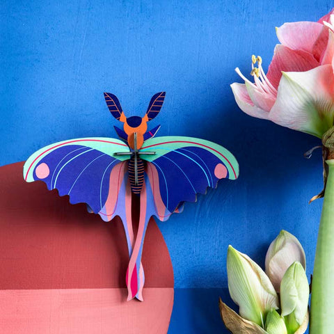 Studio Roof Blue Commet Butterfly Wall Decoration shown on blue wall