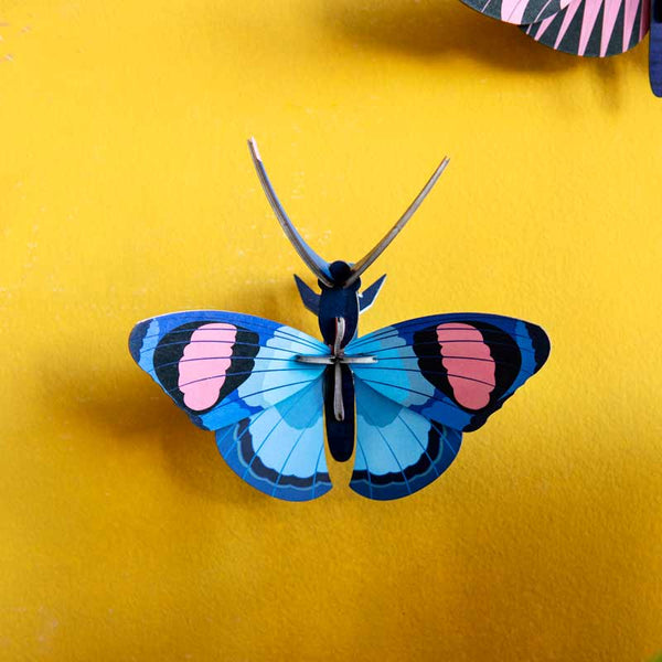 Studio Roof Peacock Butterfly Wall Decoration shown on yellow wall