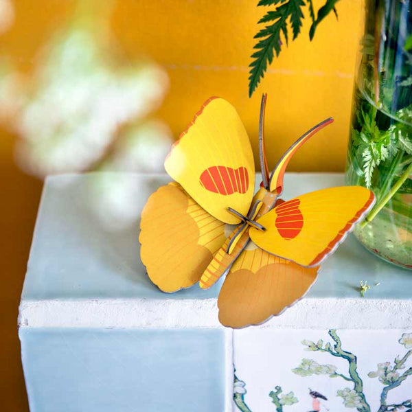 Studio Roof Yellow Butterfly Wall Decoration perching on wall