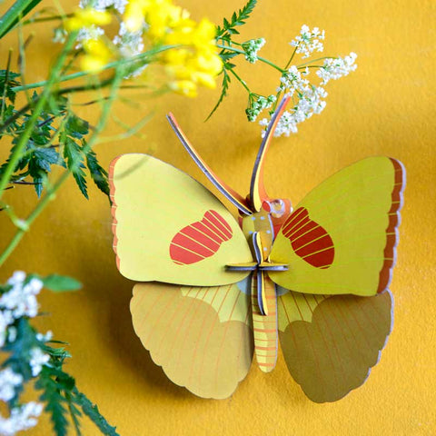 Studio Roof Yellow Butterfly Wall Decoration on yellow wall