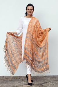 Natural Dye Block Print Filature Silk Dupatta - Creative Bee