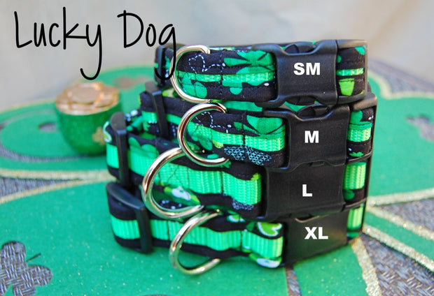 Lucky Dog Collar | Stitchpet