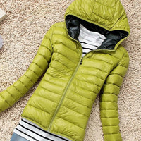 Women's Jackets -Coat Cotton-padded Jacket Slim Solid Zipper - ArtOfExpo
