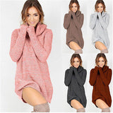 Women's Dress - Knitted Dress Turtleneck Long Sleeve Slim Loose Dress Pullovers - ArtOfExpo