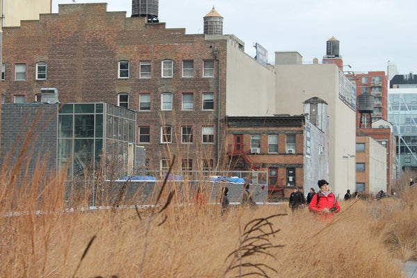 Person - The High Line