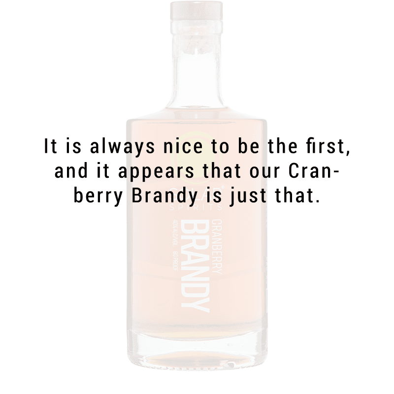 Solar Spirits Cranberry Brandy 750ml