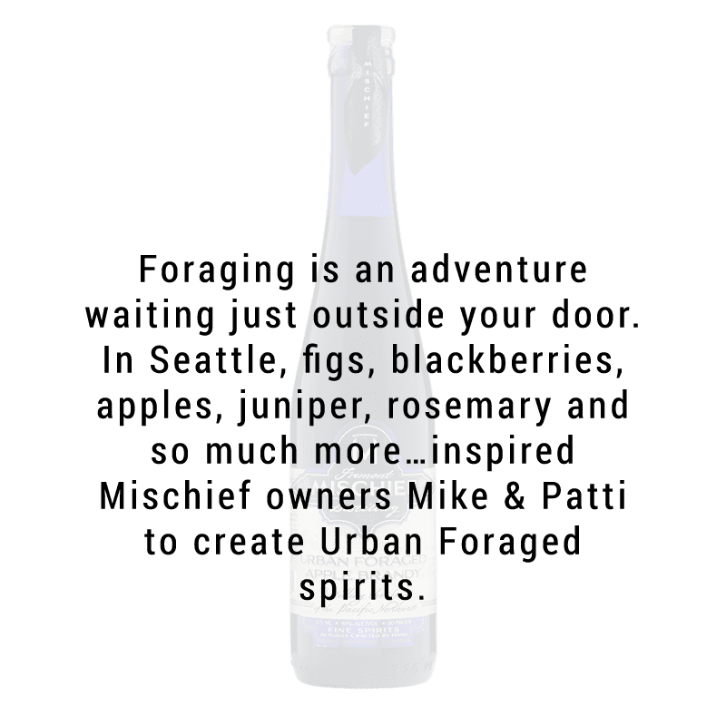 Fremont Mischief Urban Forage Apple Brandy 750mL