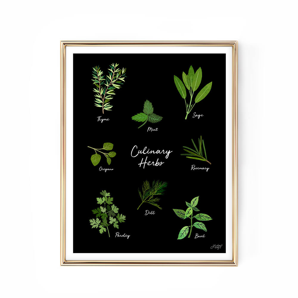 culinary herbs illustration kitchen art print decor lindsey kay collective