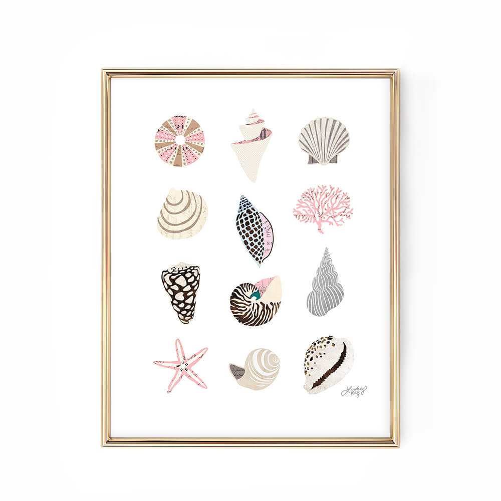 seashell illustration art print