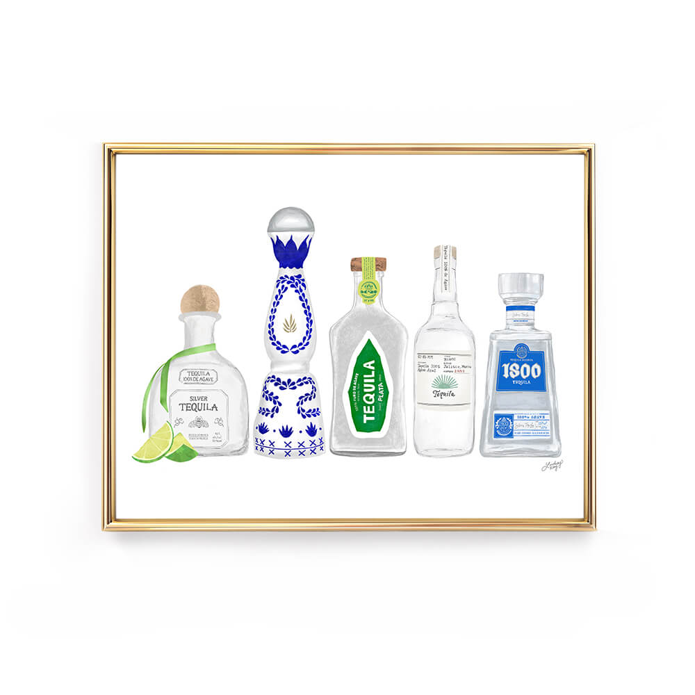 tequila bottles illustration art print lindsey kay collective wall art