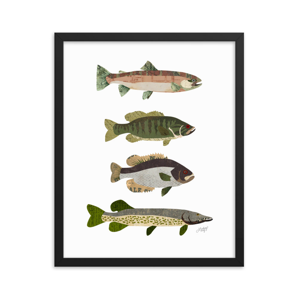 Fish Collage - Framed Matte Print