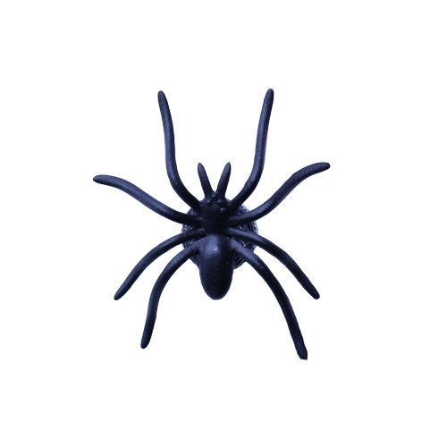 Nano Spider Geocache Container- Black
