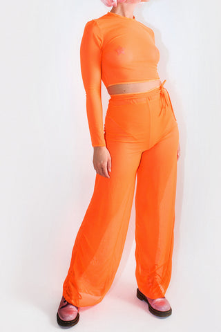 Neon Mesh Sleeved Crop Top *4 Colours