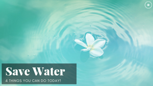 4 Ways to Save Water TODAY!