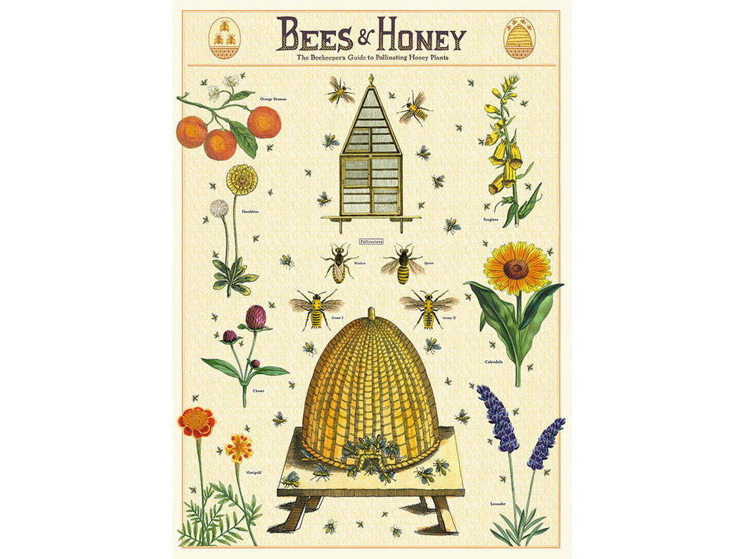 Bees & Honey 2, single sheet, gift wrap