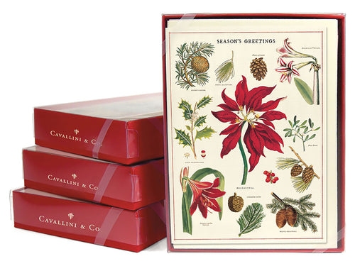 Christmas Botanica, Boxed Set of 8