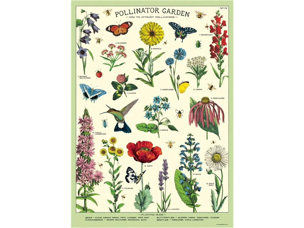 Decorative Wrap, Pollinators