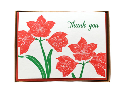 Amaryllis Thank You Greeting Card
