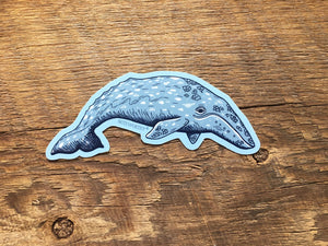 Gray Whale Sticker