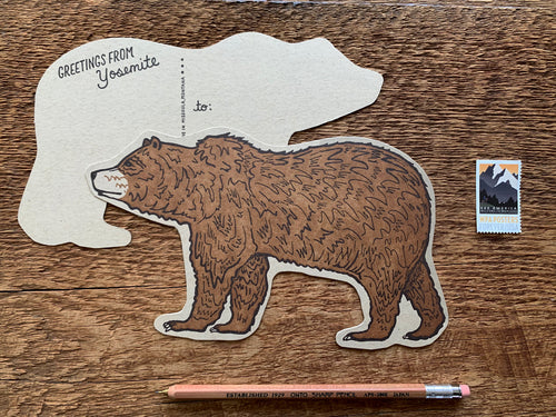 Yosemite Bear Postcard