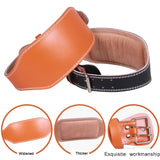 Double Buckle Padded Leather Lifting Belt, Suede Lined with Foam Lumbar Pad