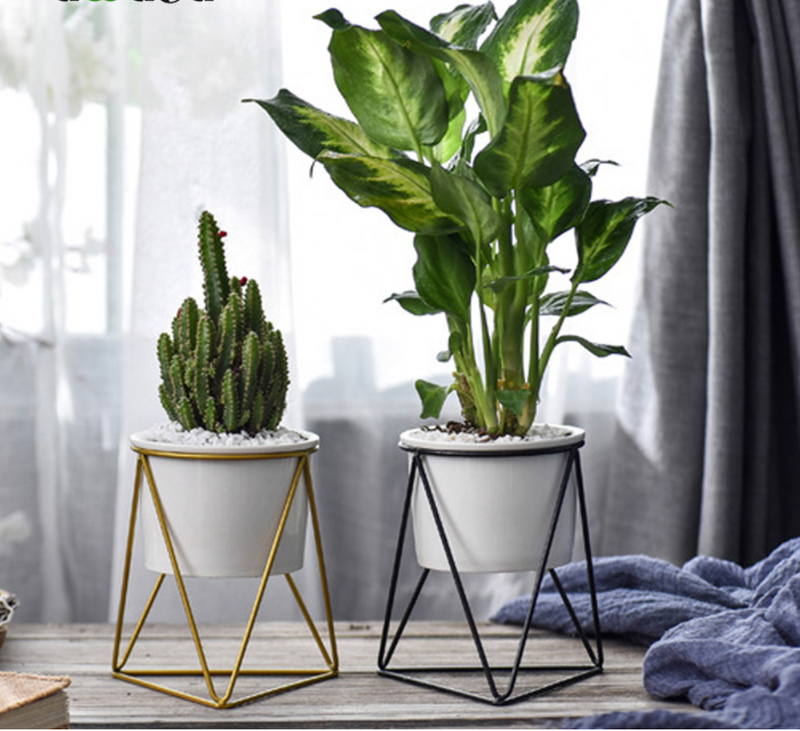 Palma Ceramic Planter With Geometric Stand
