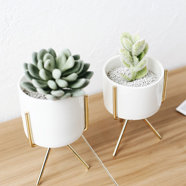 Tuscan White Ceramic Planters With Stand Set/3