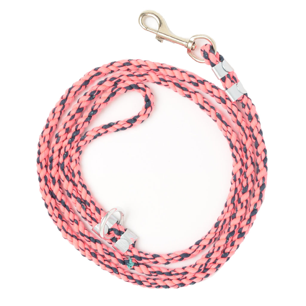 Be Pawsitive Element Leash