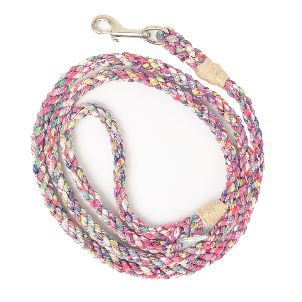 Electric Rainbow Artisan Leash