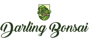 Darlingbonsai.com