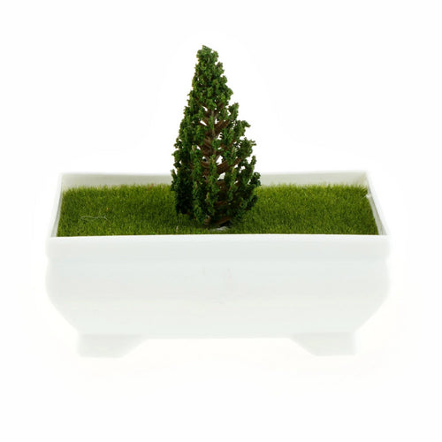 Micro Landscape Mini Tree