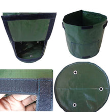 Load image into Gallery viewer, Grow Planter Container Bag