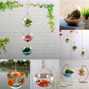 Transparent  Hanging Flower Vase