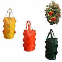 Load image into Gallery viewer, Growing Fruits Outdoor Bag