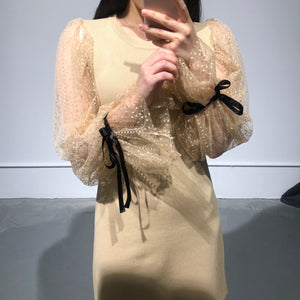 JISU Lace Sleeves Dress