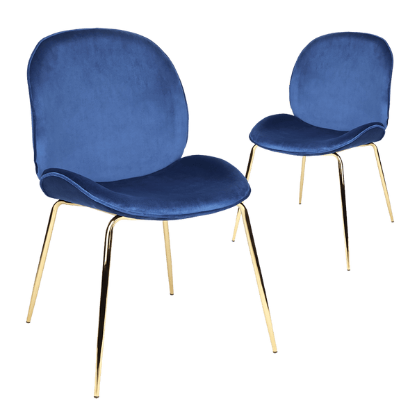 Blue velvet dining chairs with gold legs | Luxury dining chairs & tables, Perth WA