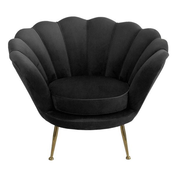 Black velvet shell armchair with gold legs and feet | Furniture and homeware - Perth, WA