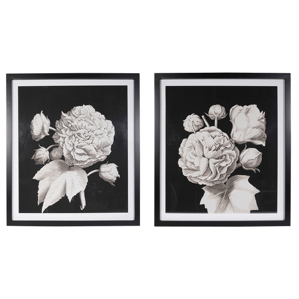 Black and white floral art set of 2 | Artworks, canvases and art - Perth, WA