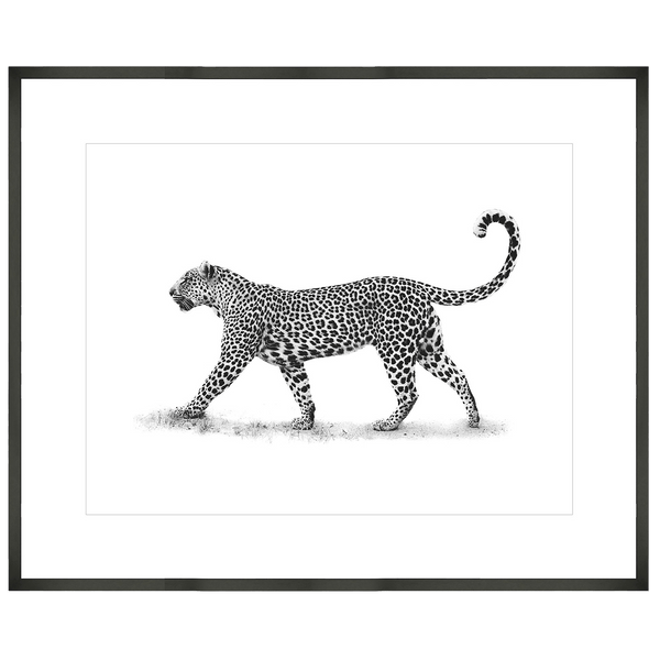 Black and white leopard art print set in a solid timber black frame | Art and accessories | Perth, WA
