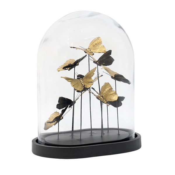 Oval glass dome with gold decorative butterflies inside and a black base | Decorative Home Accessories & Homewares - Perth, WA