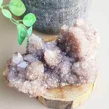 Load image into Gallery viewer, Amethyst Cactus / Spirit Quartz