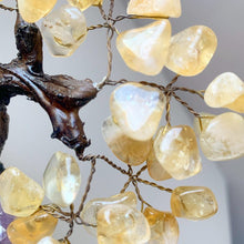 Load image into Gallery viewer, Citrine Crystal Tree on Amethyst Base