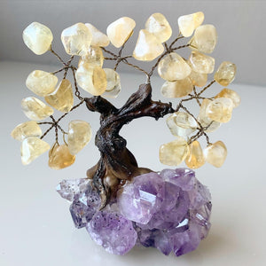 Citrine Crystal Tree on Amethyst Base
